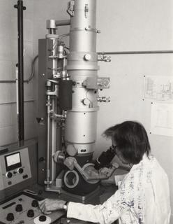 Ruth Bleier looking into her electron microscope, 1980's