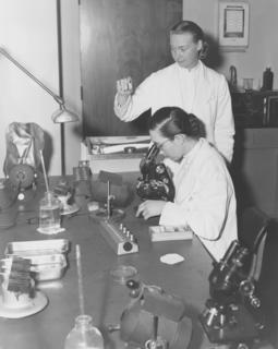 Sister Fernande Pelletier, M.D. and Sister Mathias Zimmerman, M.D. in the laboratory at Georgetown University Medical School, 1959