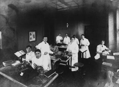 Florence Sabin (seated, middle table) teaching anatomy, Johns Hopkins University School of Medicine, early 1900s